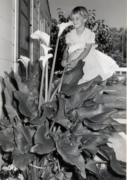 Calla Lilies and me- age 4